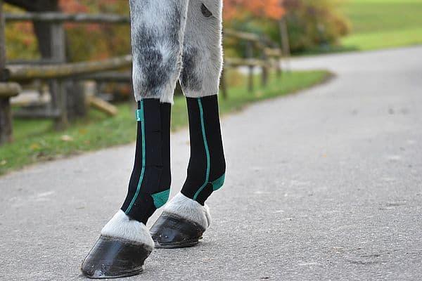 Kompressionsgamaschen für Pferde